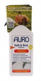 Anticalcare Antiruggine - Kalk & Rost Entferner