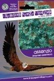 Assenzio - Artemisia Absinthium