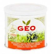 Germogli di Erba Medica - Alfalfa - 500 g