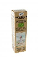 Giob-Ban 2