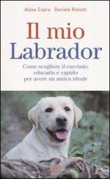 Il mio Labrador