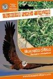 Kikuyu - Erba D'africa - Pennisetum Olandestinum