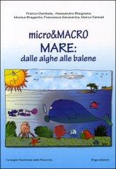 Micro & Macro Mare: dalle Alghe alle Balene