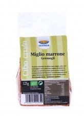 Miglio Marrone - Germogli