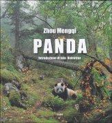 Panda - Libro