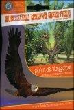 Pianta del Viaggiatore - Ravenala Madagascariensis