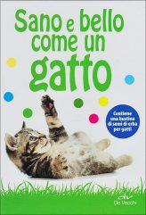 Sano e Bello come un Gatto