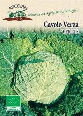 Semi di Cavolo Verza Vertus - 5 gr - BU008
