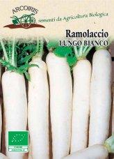 Semi di Ramolaccio Lungo Bianco - 8 gr - BU044