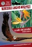 Uccello del Paradiso - Sterlizia Reginae