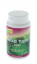 Wild Yam 100
