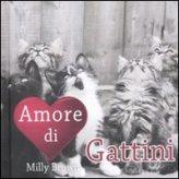 Amore di Gattini