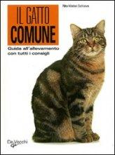 Il Gatto Comune