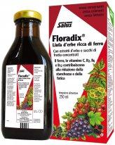 Linfa d'Erbe Floradix