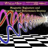 Mp3 - L'Impronta Magnetica e come l'Anima Determina il Destino