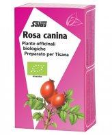 Rosa Canina Tisana