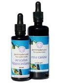 Vaccinium Myrtillus Floripotenziato - 50ml