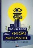 Il Grande Libro degli Enigmi Matematici